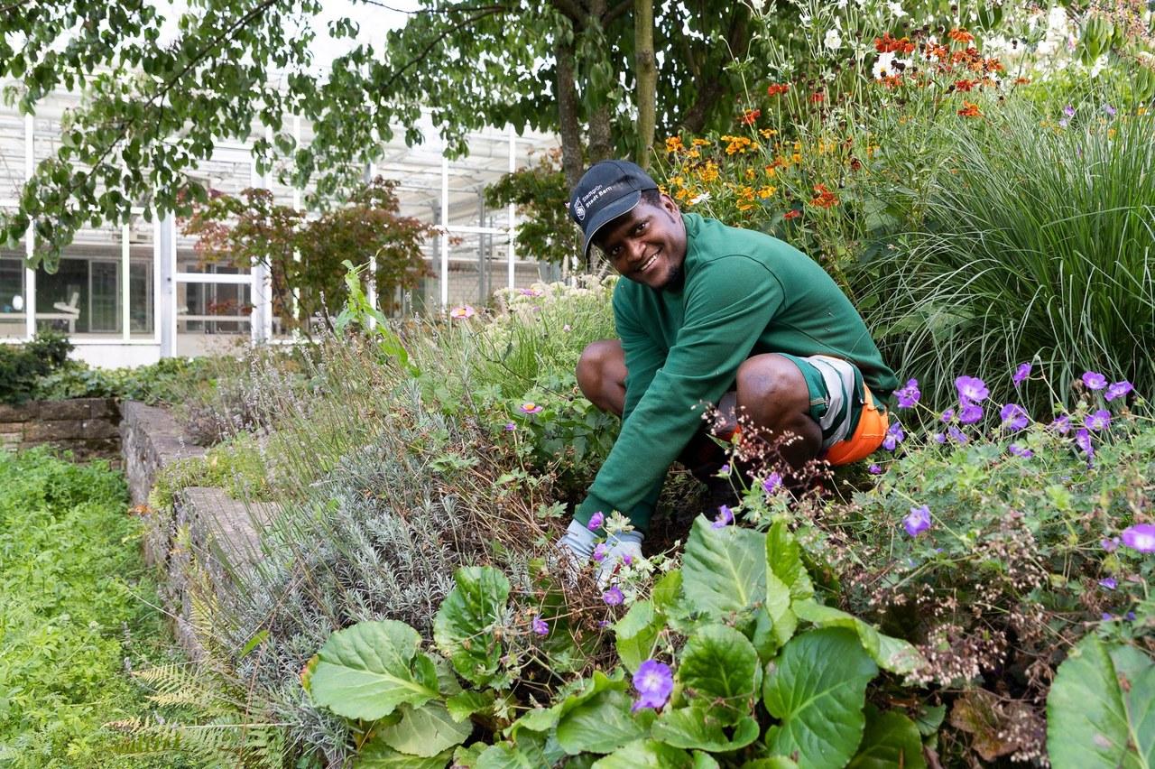 Lernender Gärtner bei der Arbeit