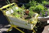 Temporärer Garten 3
