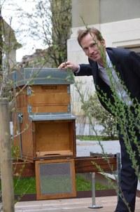Bild 4: Bundegasse 33 Gemeinderat Alexandre Schmidt beim Bienenstock im Innenhof Hochformat