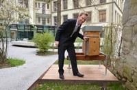 Bild 3: Bundegasse 33 Gemeinderat Alexandre Schmidt beim Bienenstock im Innenhof Querformat