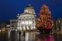 Weihnachtsbaum Bundesplatz 2014 Bernexpo