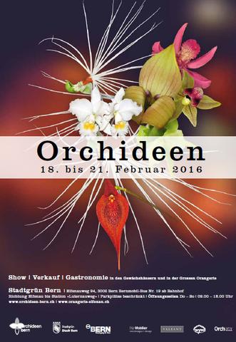 Plakat Orchideenausstellung