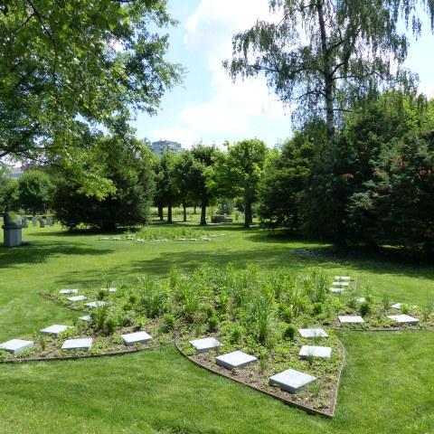Buddha Garten Bremgartenfriedhof Bild 2. Vergrösserte Ansicht