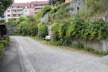Bild 3 Unversiegelter Weg begrünte Mauern (Sabine Tschäppeler). Vergrösserte Ansicht