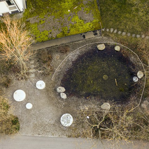 Volkssschule Steigerhubel Teich Bild Joel Schweizer. Vergrösserte Ansicht