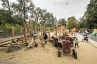 Bild 5 Neuer Spielplatz Dählhölzli