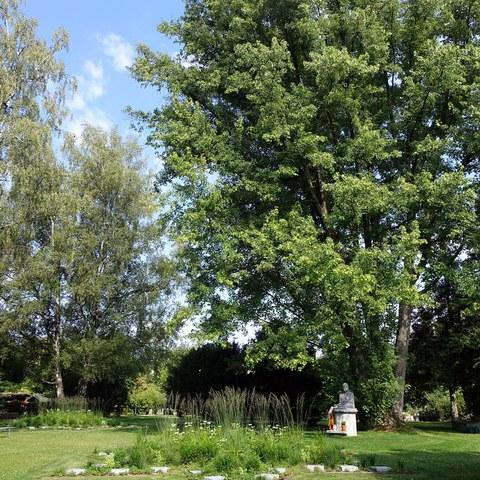 Urnenthemengrab Buddha Bremgartenfriedhof (Bild: Stadtgrün Bern). Vergrösserte Ansicht