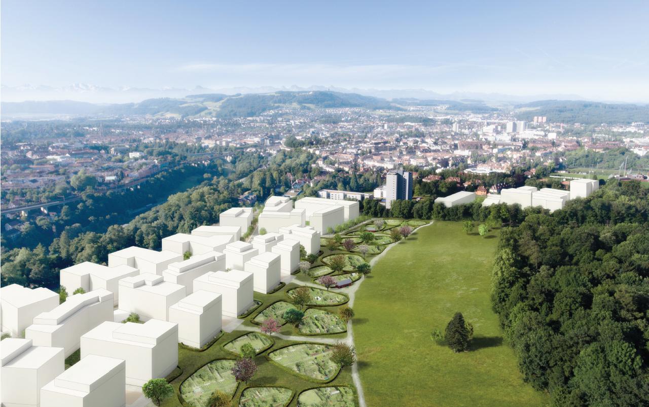 Visualisierung Städtebau Viererfeld / Mittelfeld Rang 1.