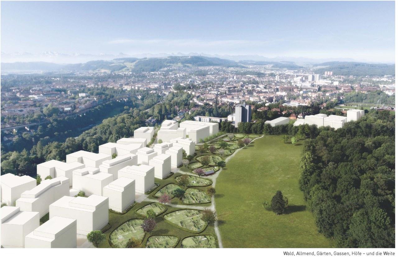 Viererfeld, städtebauliches Konzept