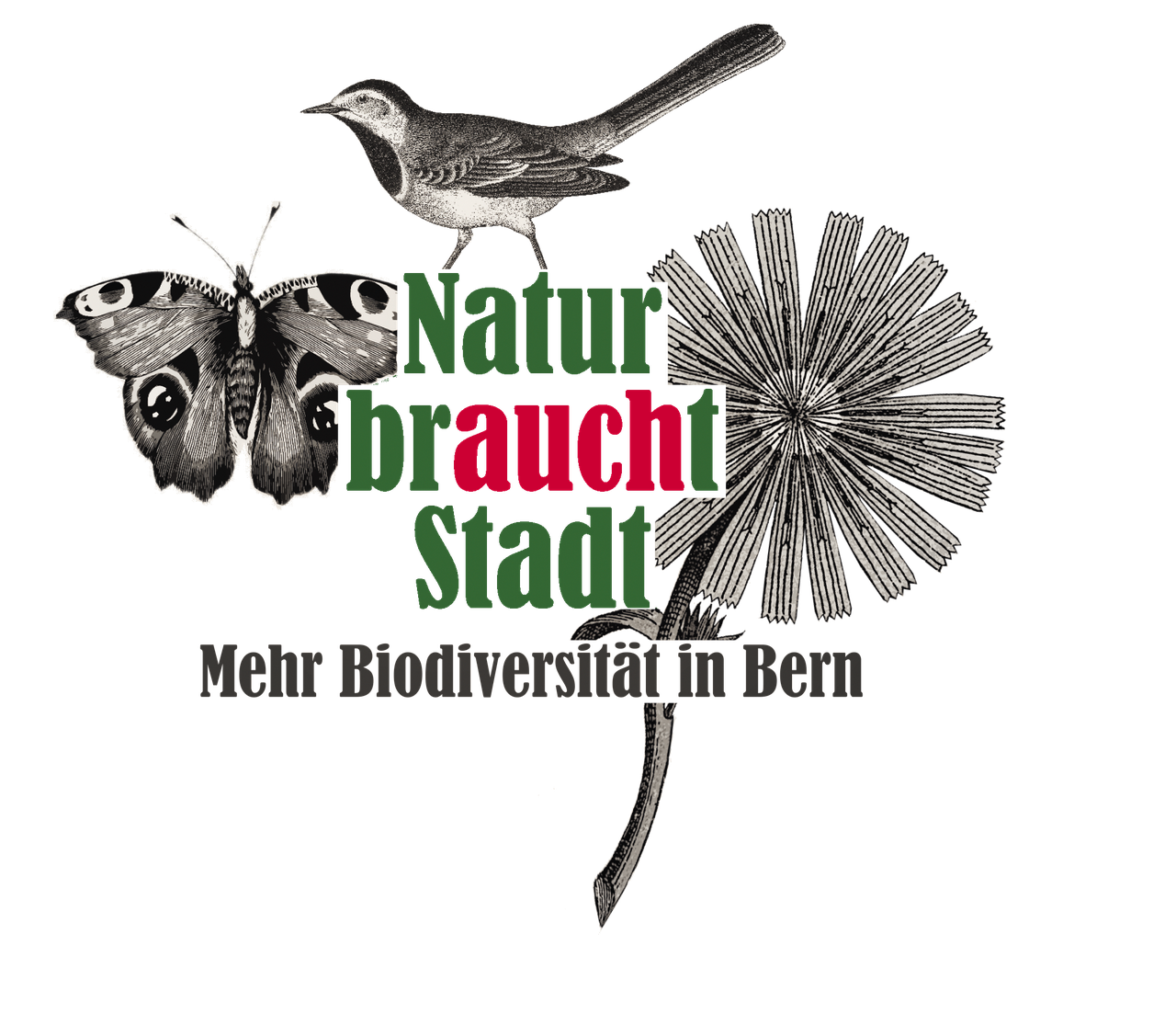 Logo Natur braucht Stadt